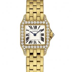 Top Grade Fashion Ladies Cartier Stainless Steel Santos Demoiselle Watches