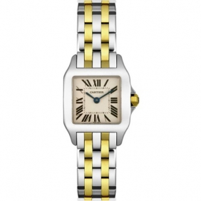 Fake Stainless Steel Cartier Santos Demoiselle Ladies Watch Free Shipping